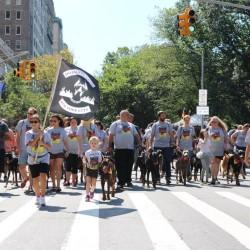 DOBERMAN PINSCHERS KICK OFF OKTOBERFEST IN NYC